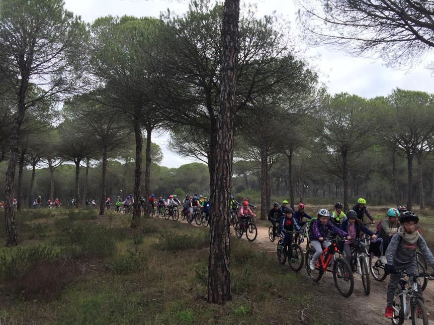 El Ayuntamiento de Cartaya organiza, con la colaboración de los centros escolares, el 'Día de la Bicicleta'.