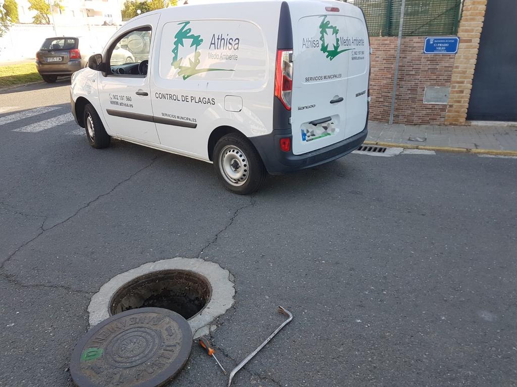El Ayuntamiento de Cartaya actúa contra las ratas, en el marco de su planificación actual para el control de las plagas urbanas.