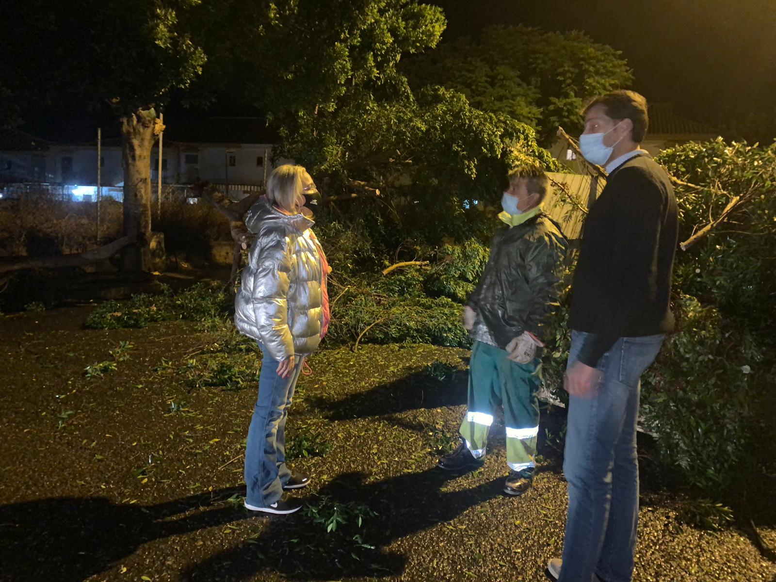 El Ayuntamiento de Cartaya trabaja a esta hora reparando los daños ocasionados por el temporal de lluvia y viento en la localidad.