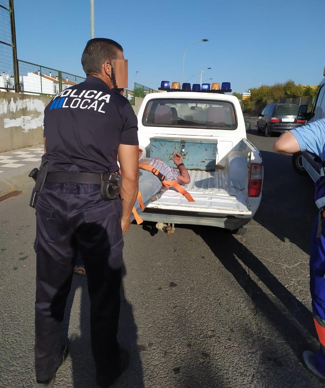 La Policía Local de Cartaya rescata a un pastor que al parecer ha sufrido un golpe de calor.