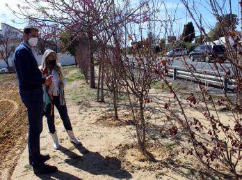 El Ayuntamiento planta más de 160 árboles y arbustos ornamentales en Cartaya, El Rompido y Nuevo Portil